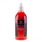 Detailer's Magic Shampoo Magic 500ml