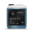 CleanTech CarnauWax 5l